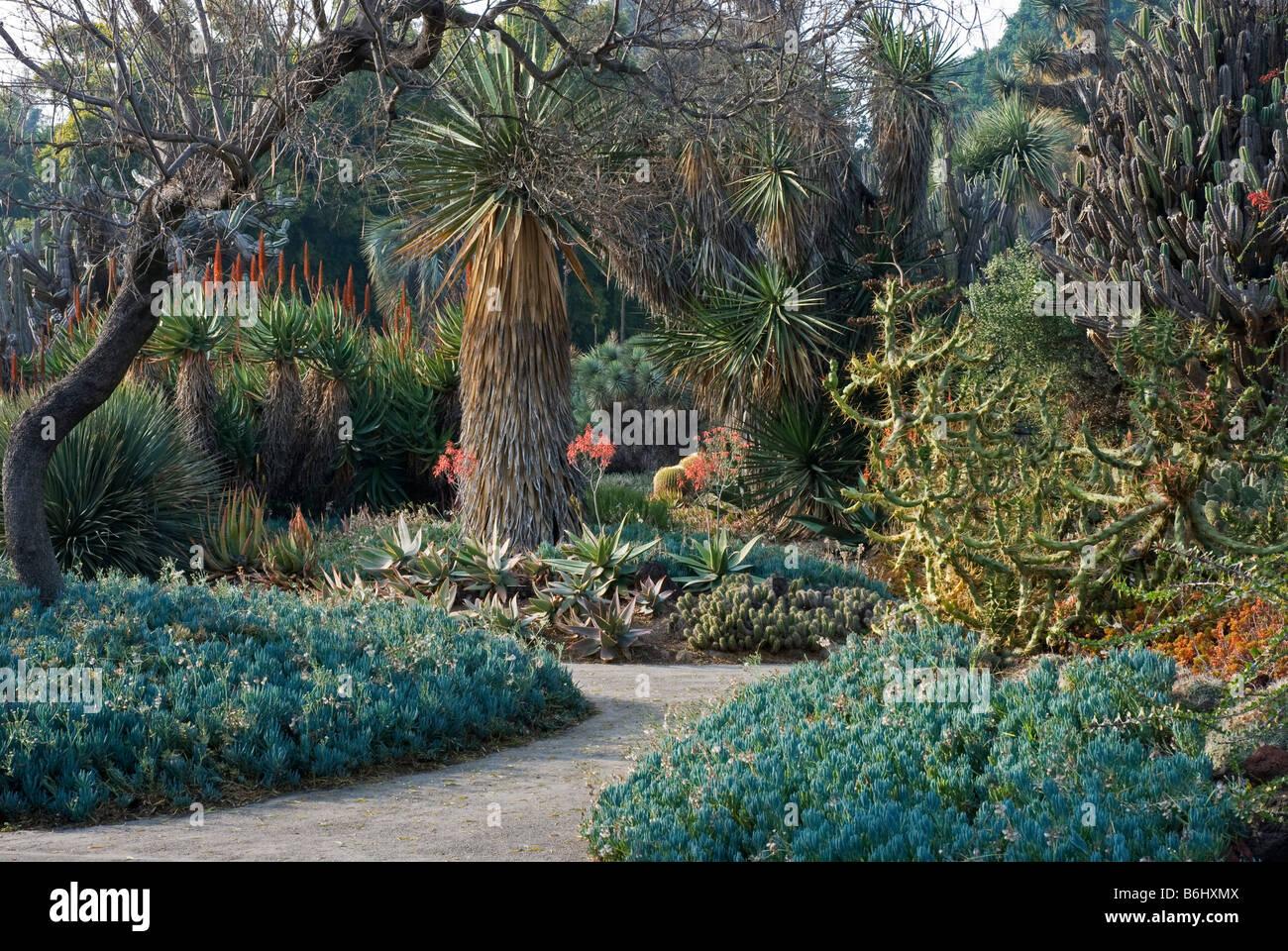 At The Huntington Botanical Gardens, Santa Monica, USA   Stock