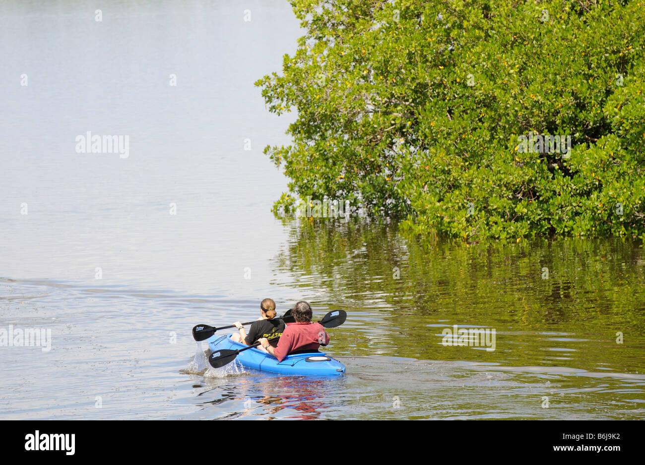 J N Ding Darling National Wildlife Refuge man and woman kayaking on Tarpon Bay Sanibel Island Florida USA - Stock Image