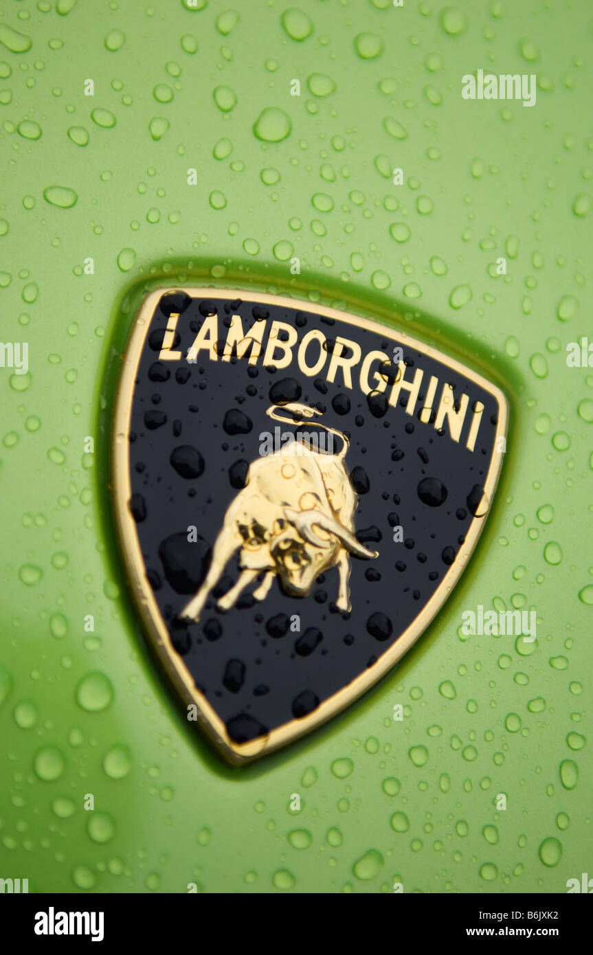 Logo On Luxury Lamborghini Sports Car Stock Photo 21314358 Alamy
