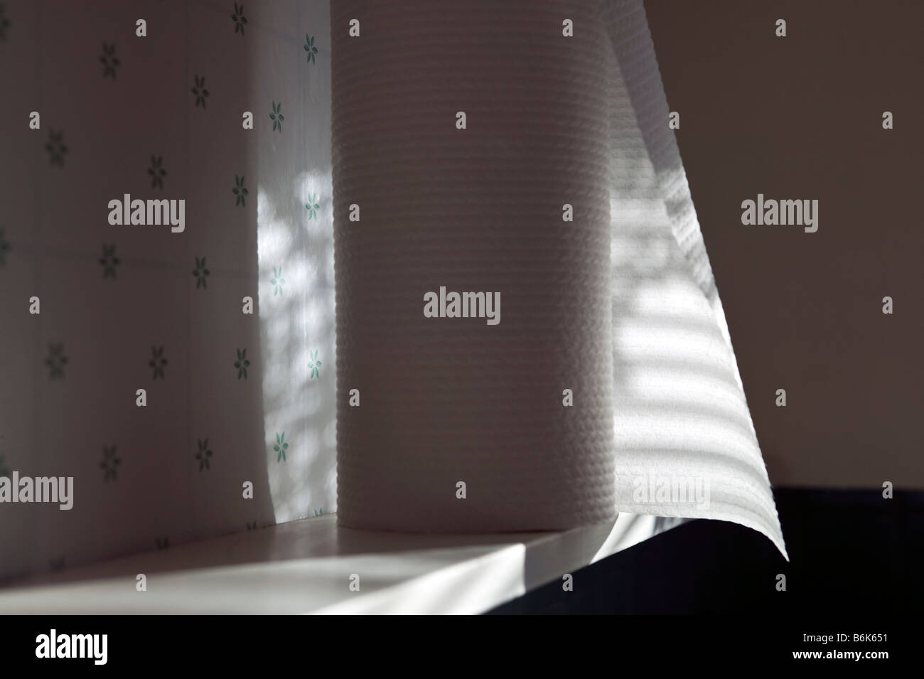Sunlight streaming through venetian blinds create a striped pattern of shadows on a roll of paper towels. - Stock Image