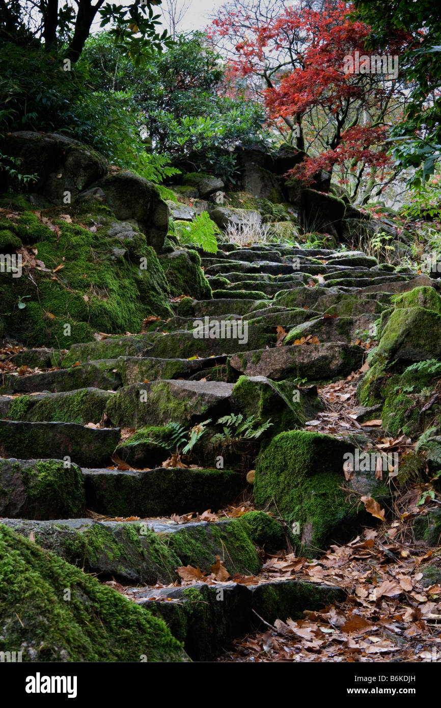 Japanese garden at Giggle Alley in Eskdale Stock Photo