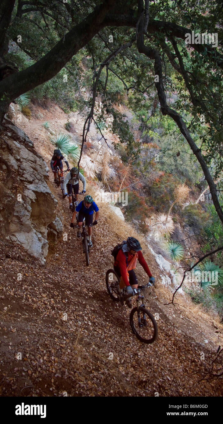 Chantry Flats Stock Photos & Chantry Flats Stock Images - Alamy on