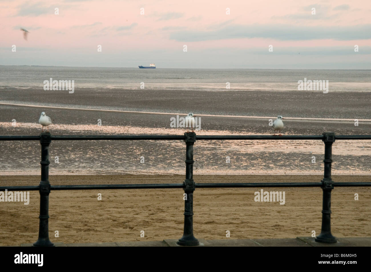 deserted rundown seaside town english sea side empty beach sunset end of an era seagull sea gull gulls birds railings - Stock Image
