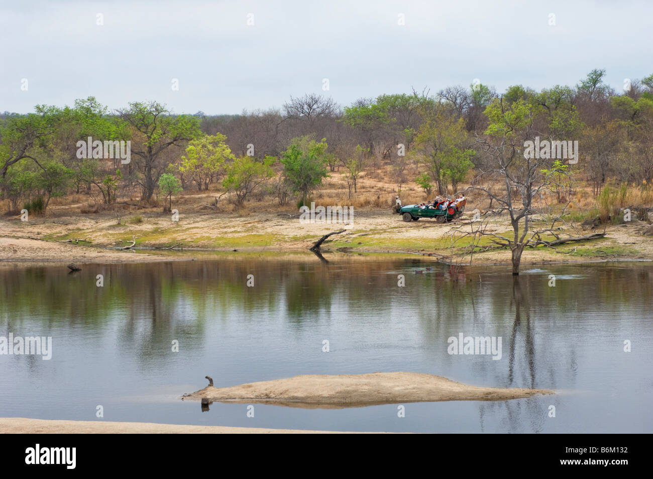 wide view landscape SAFARI Game drive jeep vehicle people south africa desert red dust dirt road drive way safari - Stock Image
