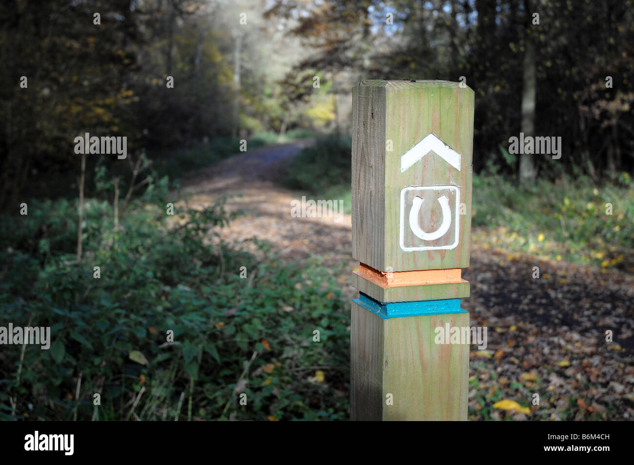 Bridleway sign post in rural area. Fineshade Wood, Northamptonshire, England, UK - Stock Image