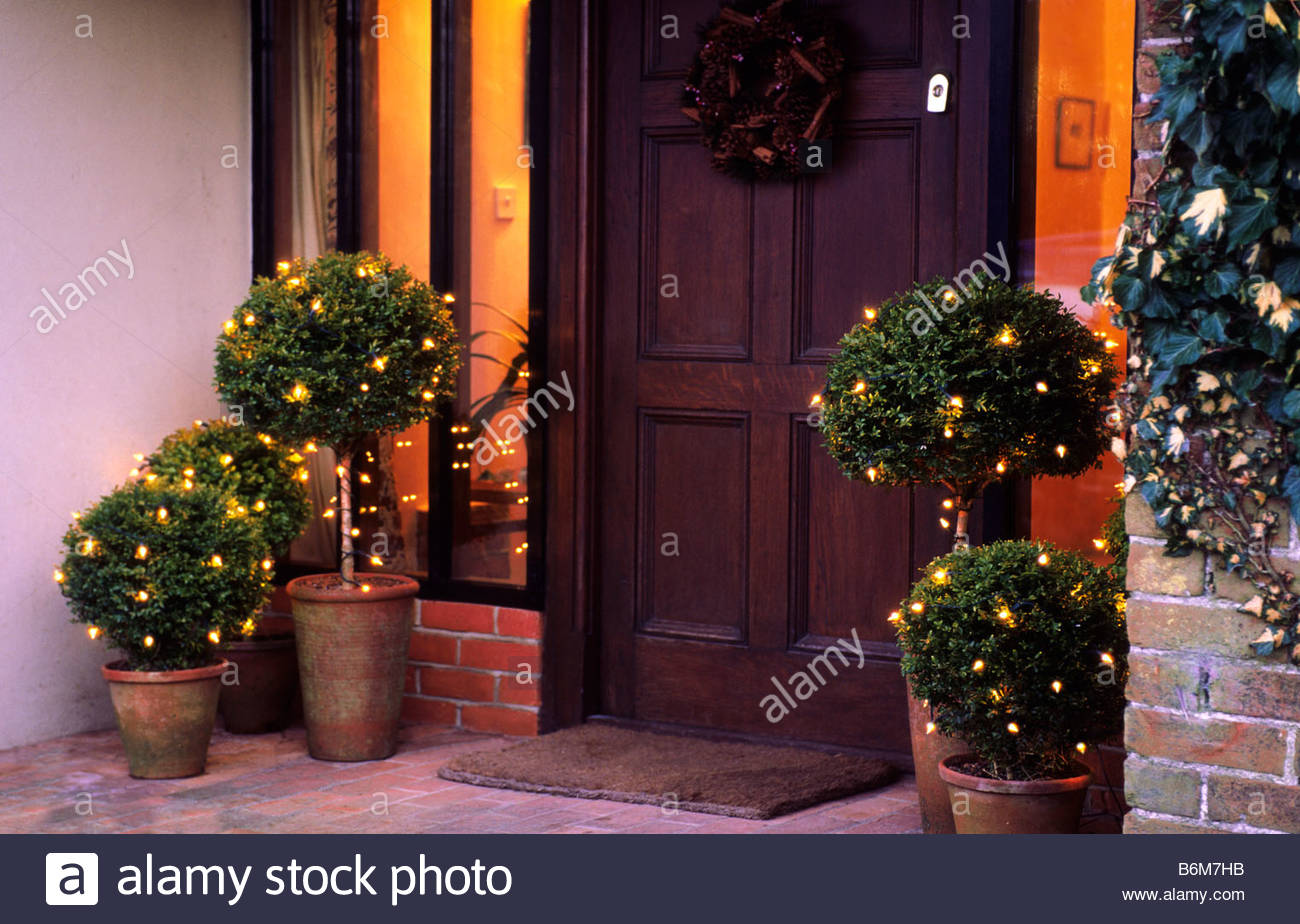 Outdoor Topiary Trees With Lights Outdoor garden christmas decorations lights on boxwood topiary in outdoor garden christmas decorations lights on boxwood topiary in terracotta pots on front porch workwithnaturefo