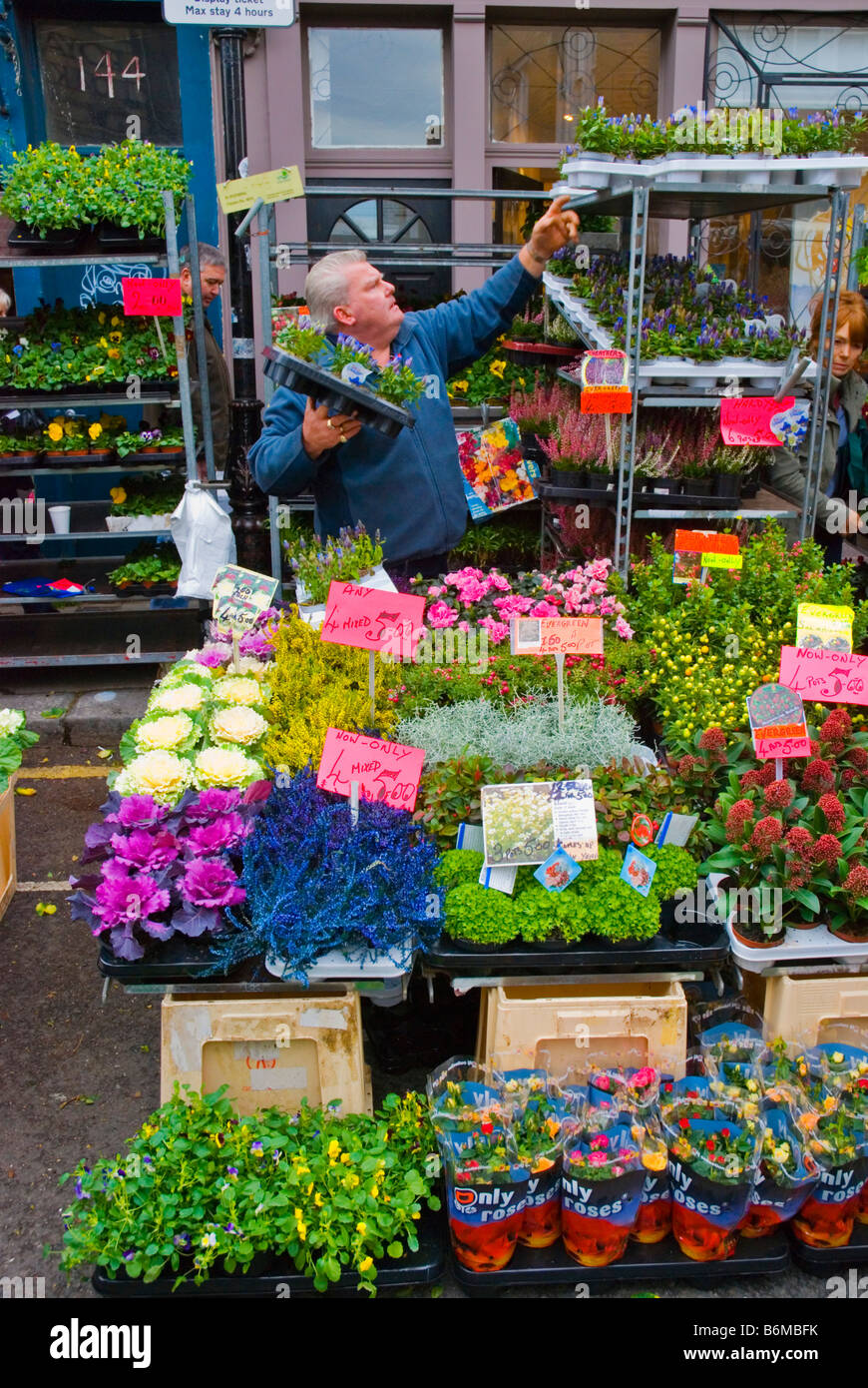 Columbia Road flower market during the Sunday market day in East London England UK Stock Photo