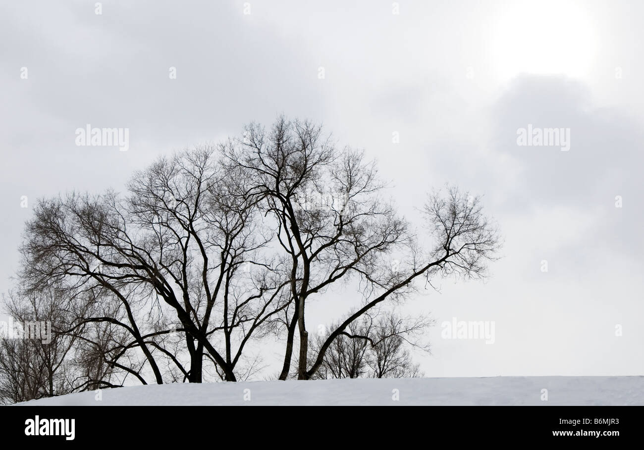 Gloomy winter day - Stock Image
