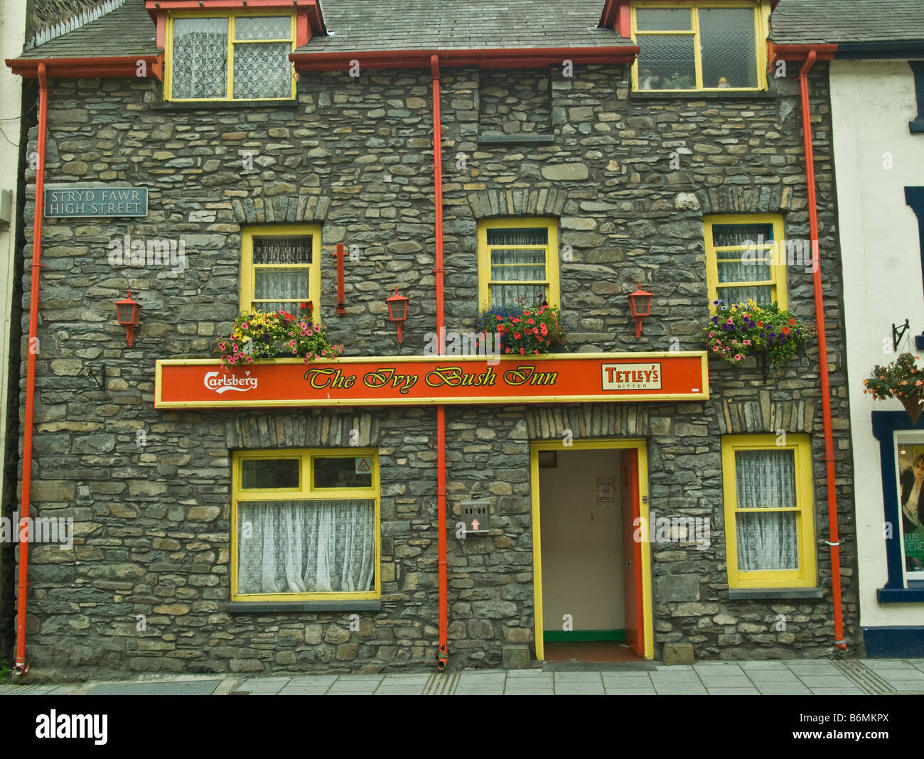 The Ivy Bush Inn Public House in Lampeter Cardiganshire - Stock Image