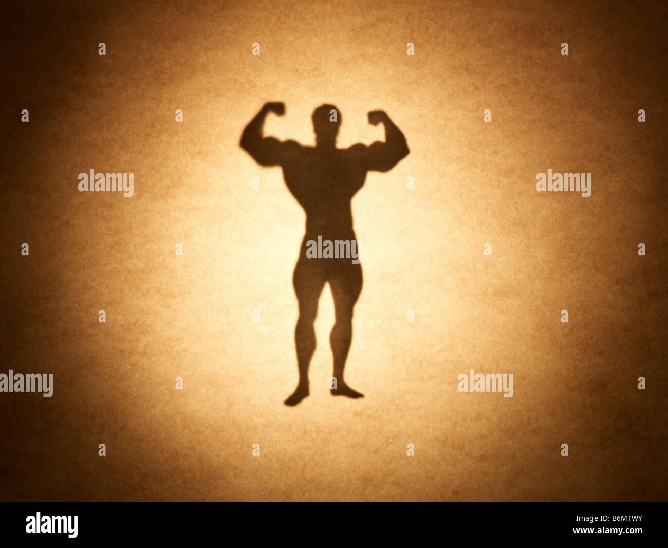 Body builder - Stock Image