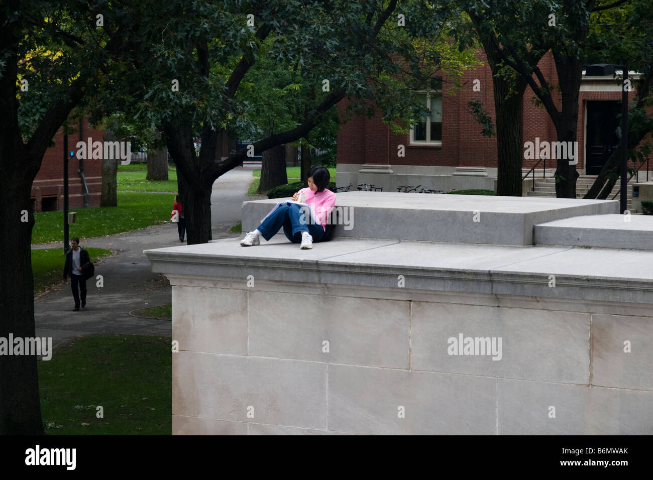 Student Studying Outside The Library Harvard Yard University Cambridge MA Massachusetts New England USA