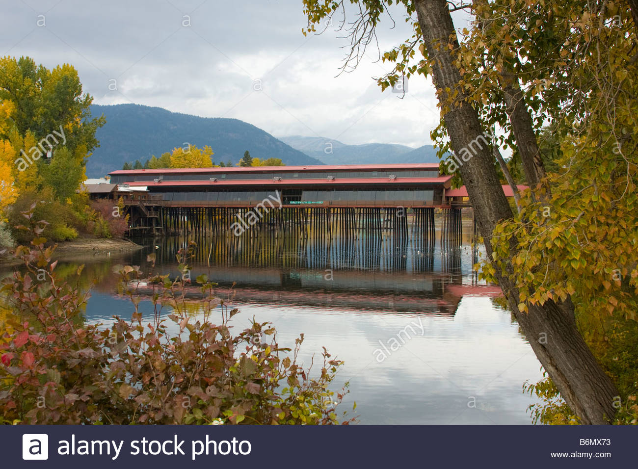 The landmark Cedar Street Bridge in Sandpoint Idaho reflecting in the water of Sand Creek - Stock Image
