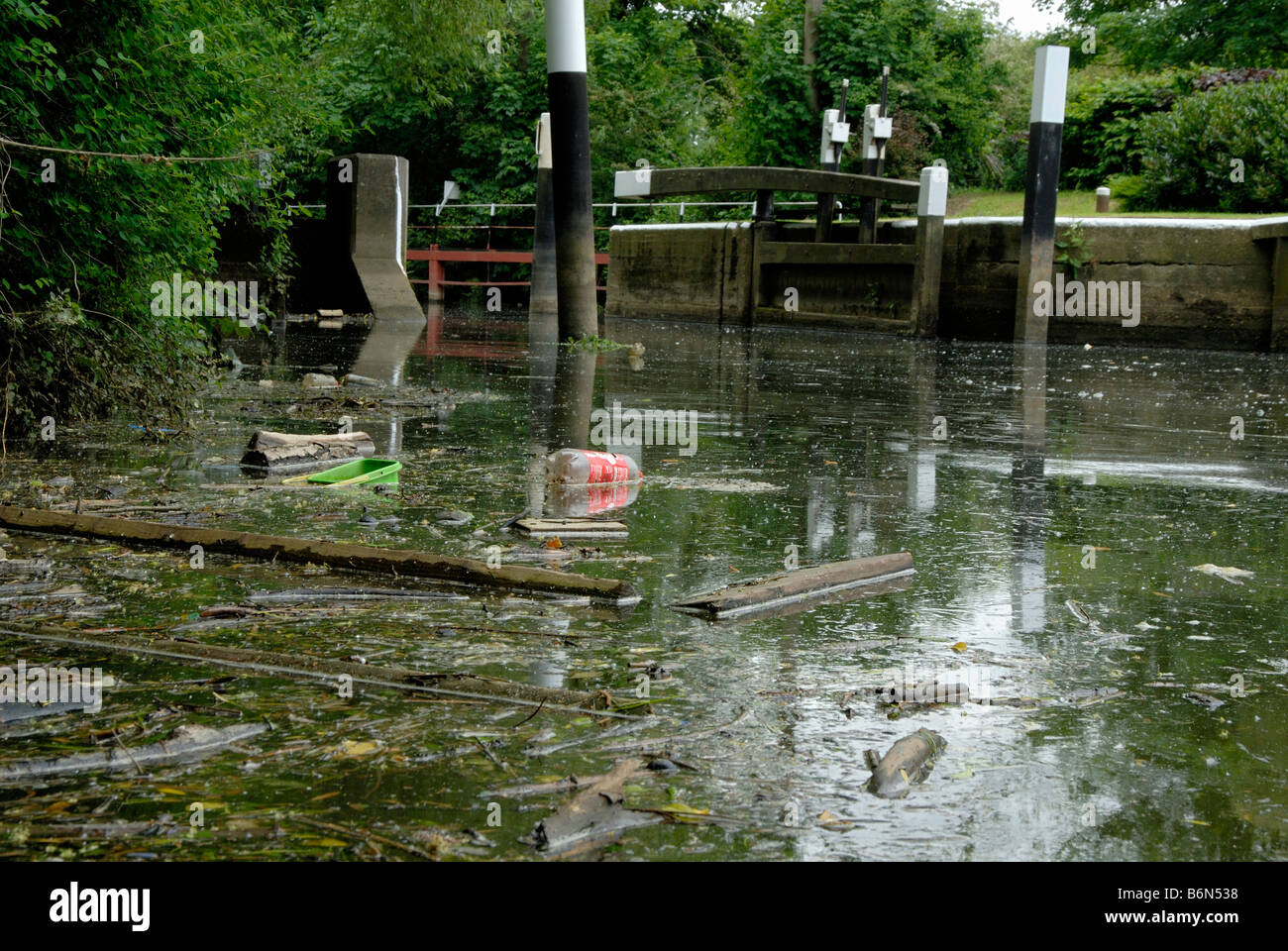 River pollution: plastic bottles, tubs, wooden logs and deadfall floating on surface of River Wey with lock gates - Stock Image