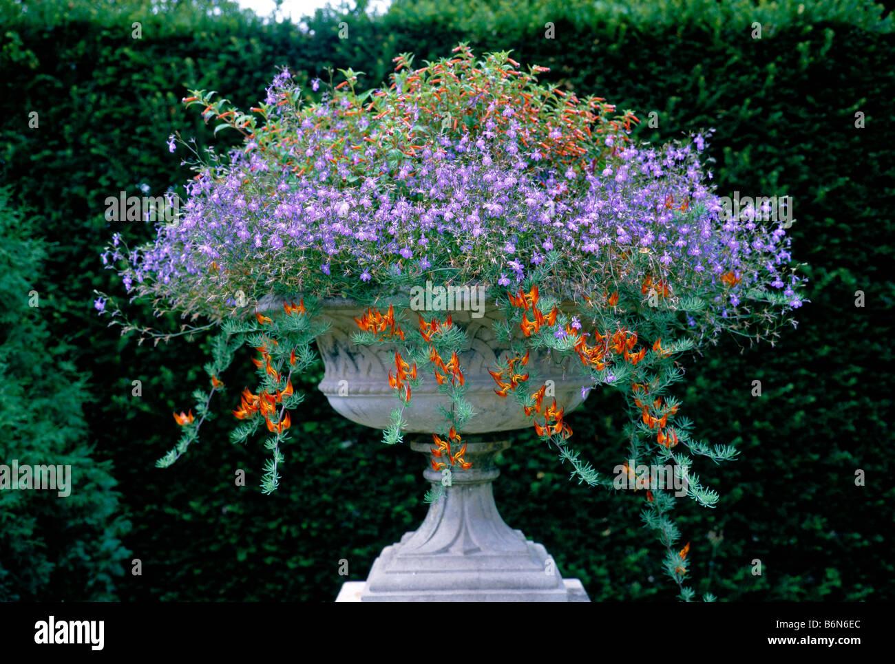 Flower Planted Stone Urn Stock Photo 21364404 Alamy