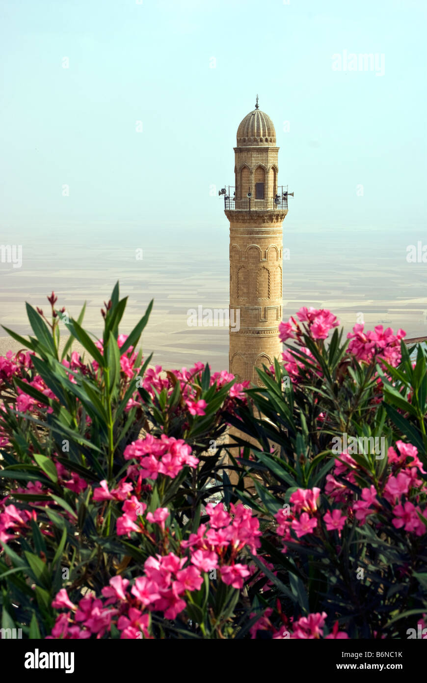 Mardin's Ulu Camii, Great Mosque, Minaret overlooking plain leading south to Syria - Stock Image