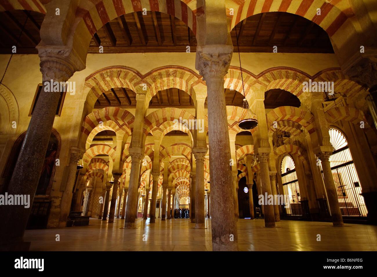 Column courtyard of the mosque cathedral cordoba andalusia spain columnas del interio de la mezquita catedral andalucia Stock Photo