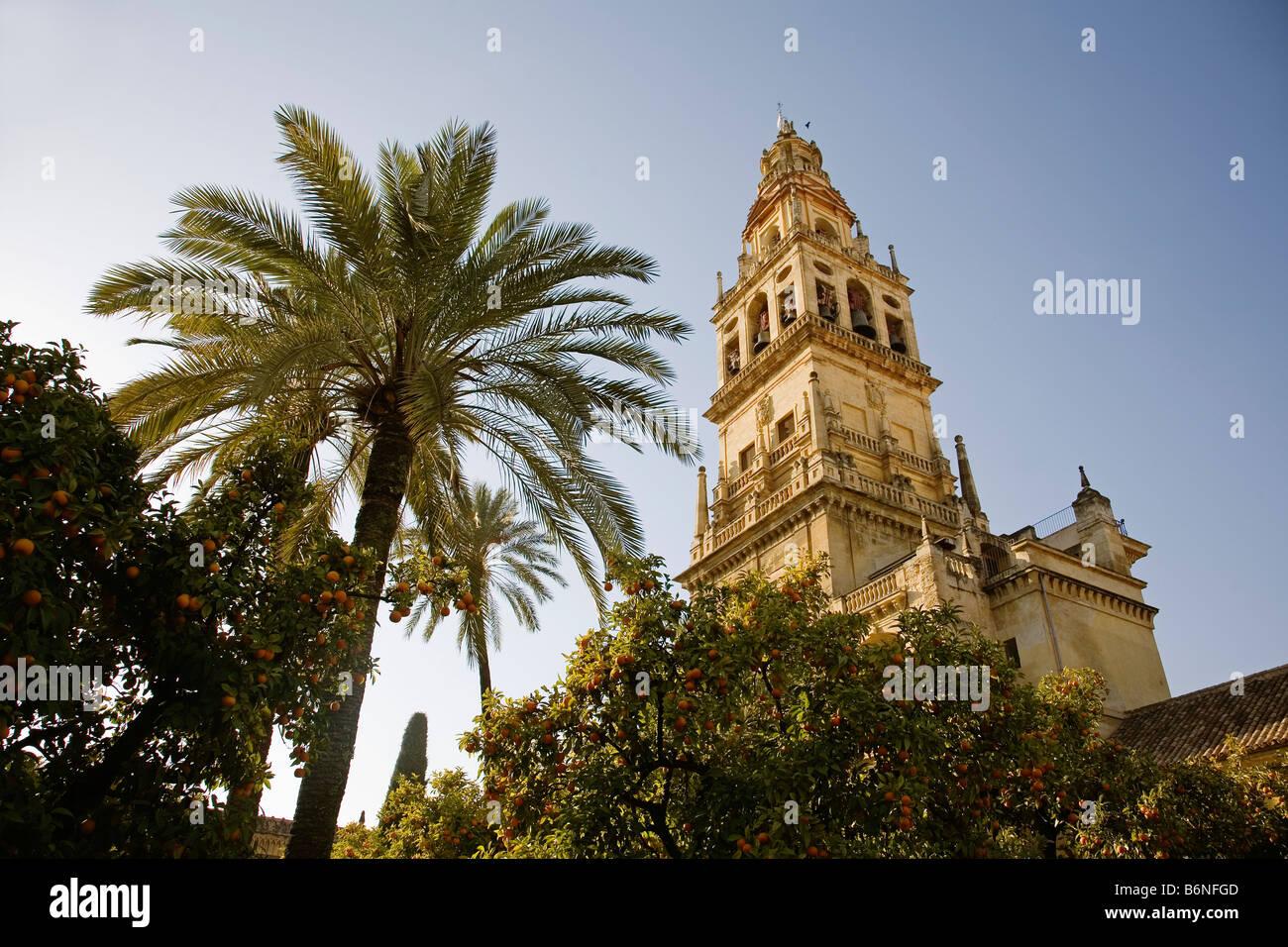 tower minaret of the mosque cathedral cordoba andalusia spain torre del alminar de la mezquita catedral y patio Stock Photo