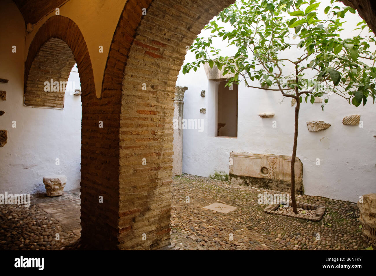 yard in the Arab Baths of tower of the Christian kings alcazar cordoba andalusia spain Stock Photo