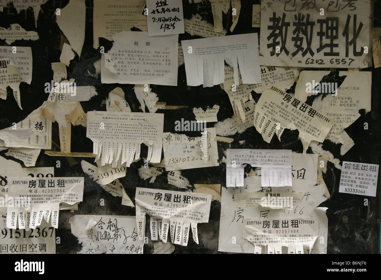 beijing noticeboard showing advertsiements for rooms and flats to rent in the capital, - Stock Image