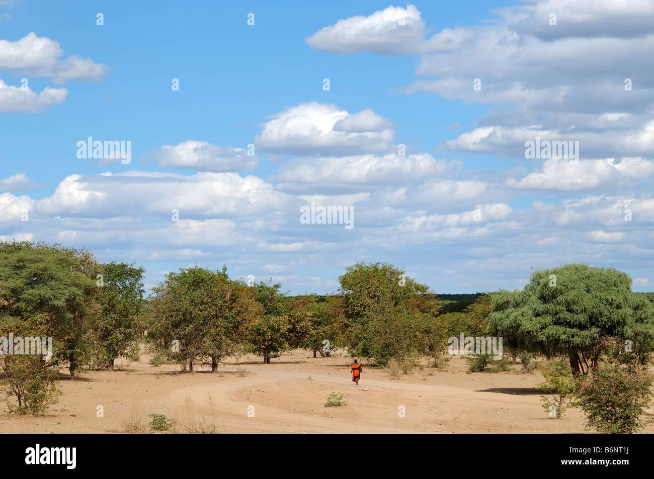 near opuwo namibia - Stock Image