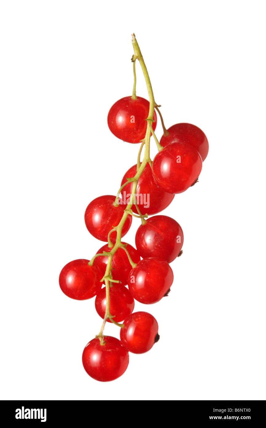Cluster of fruit - Stock Image