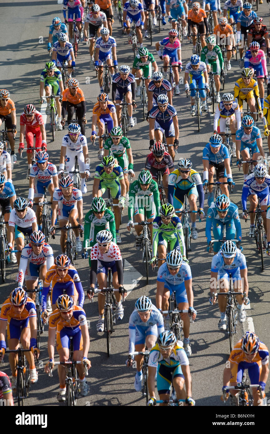 The main field of the cycle race Deutschlandtour - Stock Image