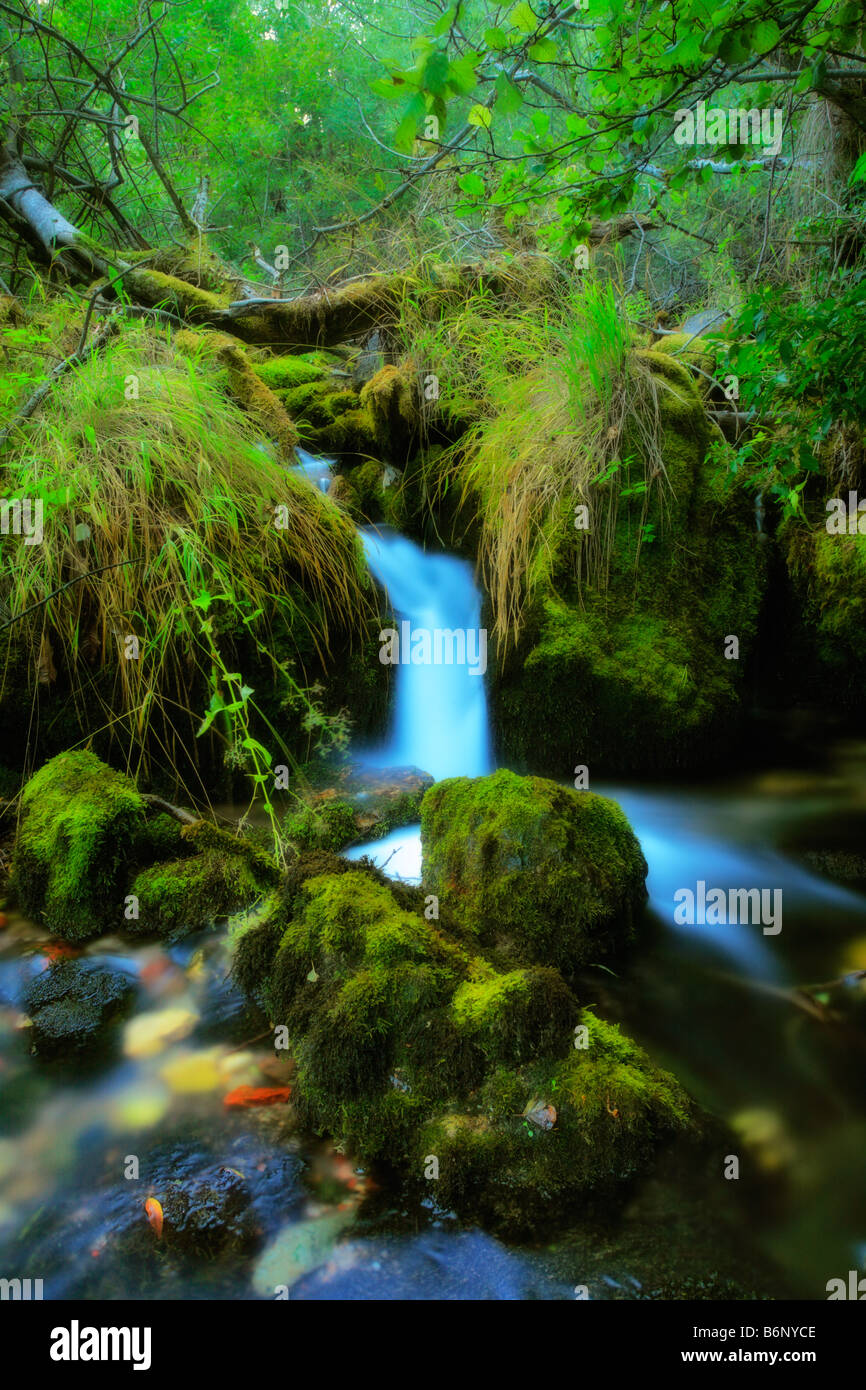 Brook in the village of Vevcani - Stock Image