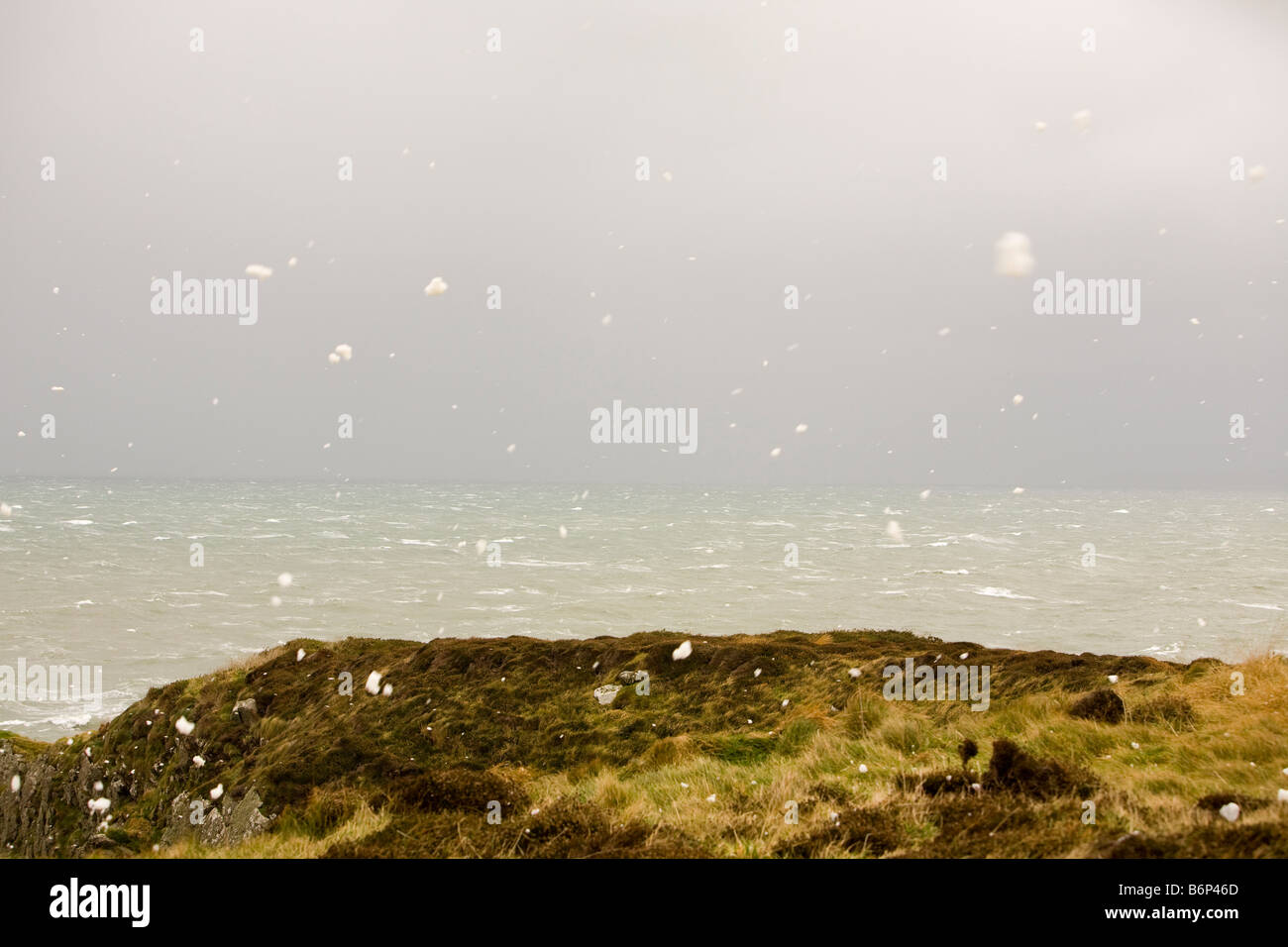 Spume blown inland from a stormy sea on The Rhins of Galloway Scotland UK - Stock Image