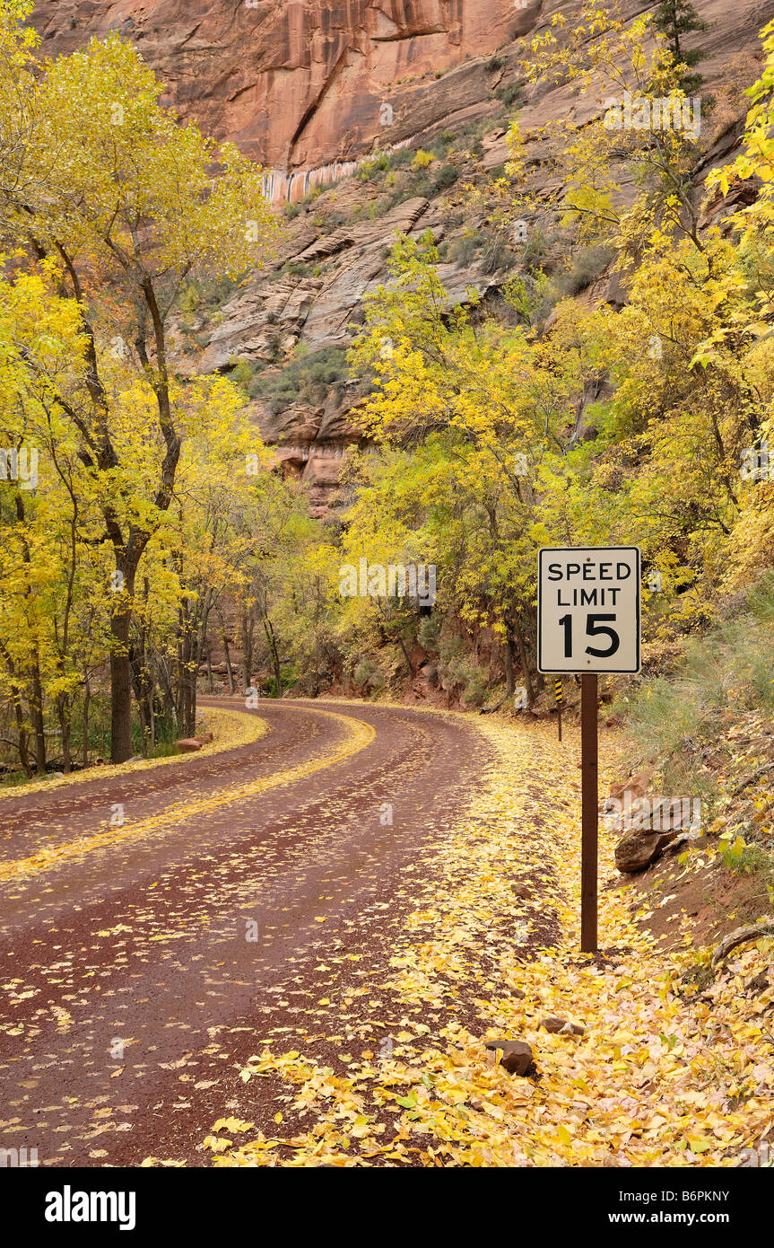 Autumn colors along the Zion Canyon Scenic Drive with a 15 mph speed limit sign in Zion National Park Utah - Stock Image