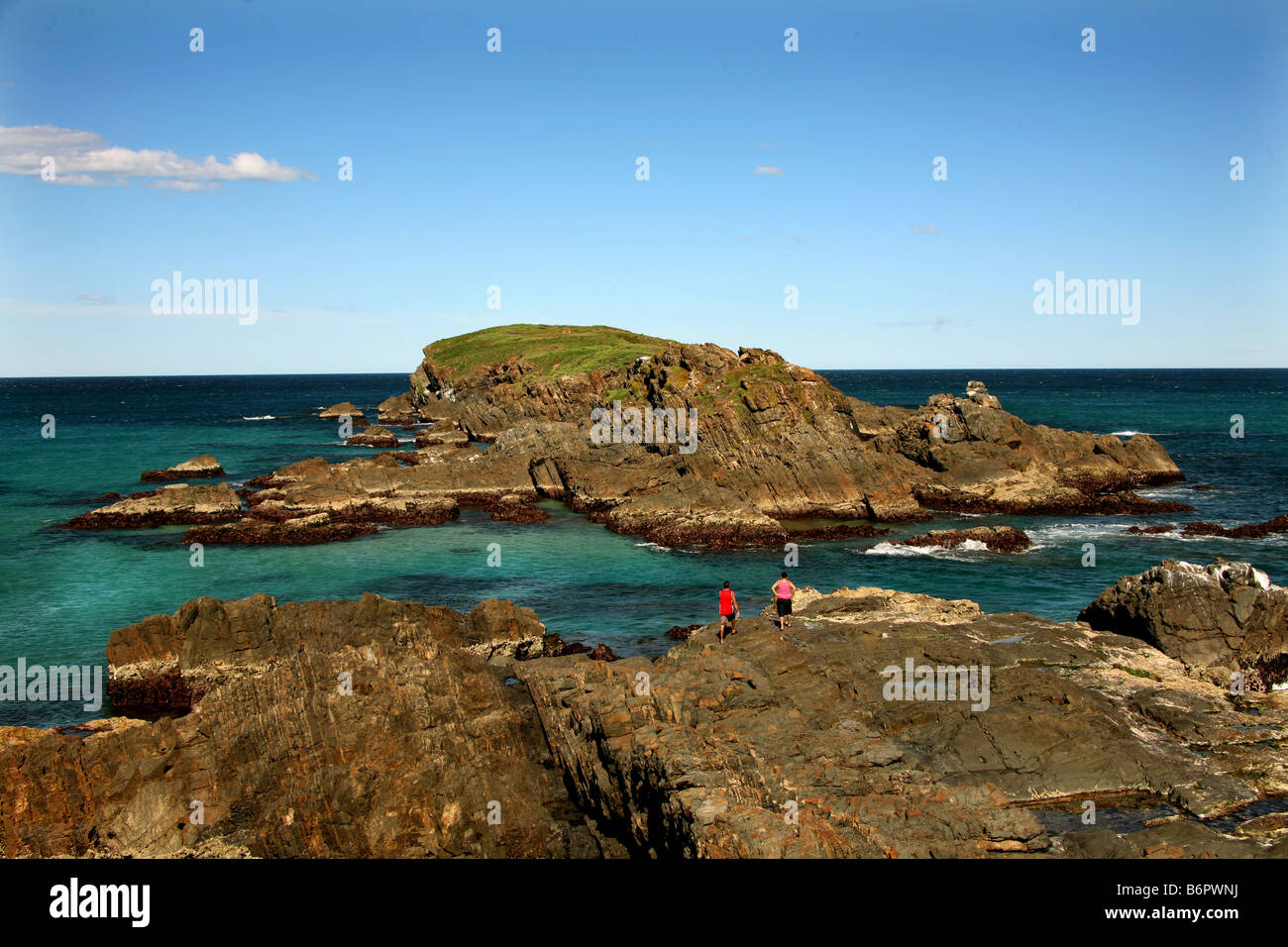 An outcrop of Australian base rock projects into the Ocean at Delicate Nobby Crescent Heads NSW Australia - Stock Image