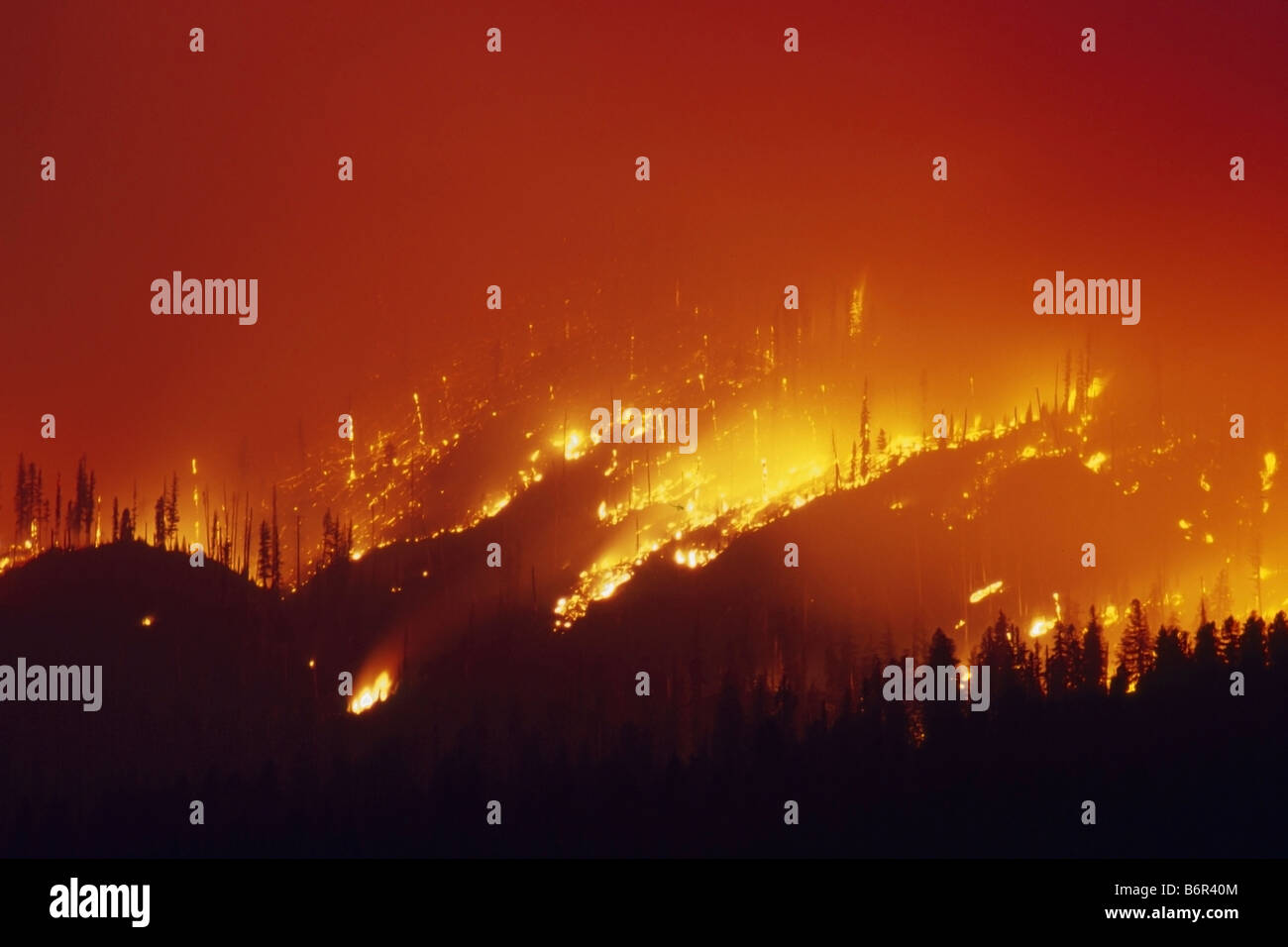 A wildfire blazes on a hillside in Grand Teton National Park - Stock Image