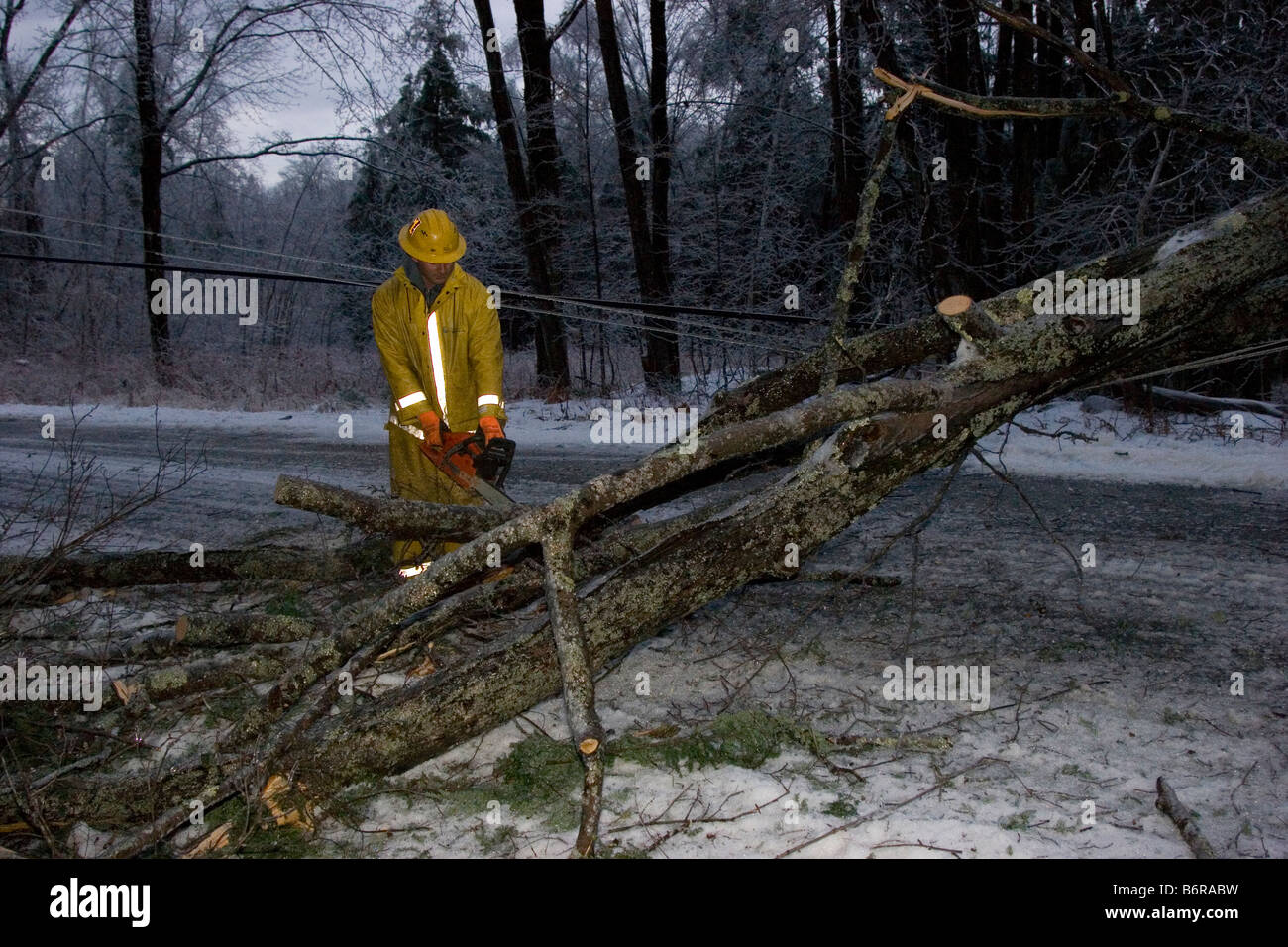 Utility worker cuts through a fallen tree on power line across road - Stock Image