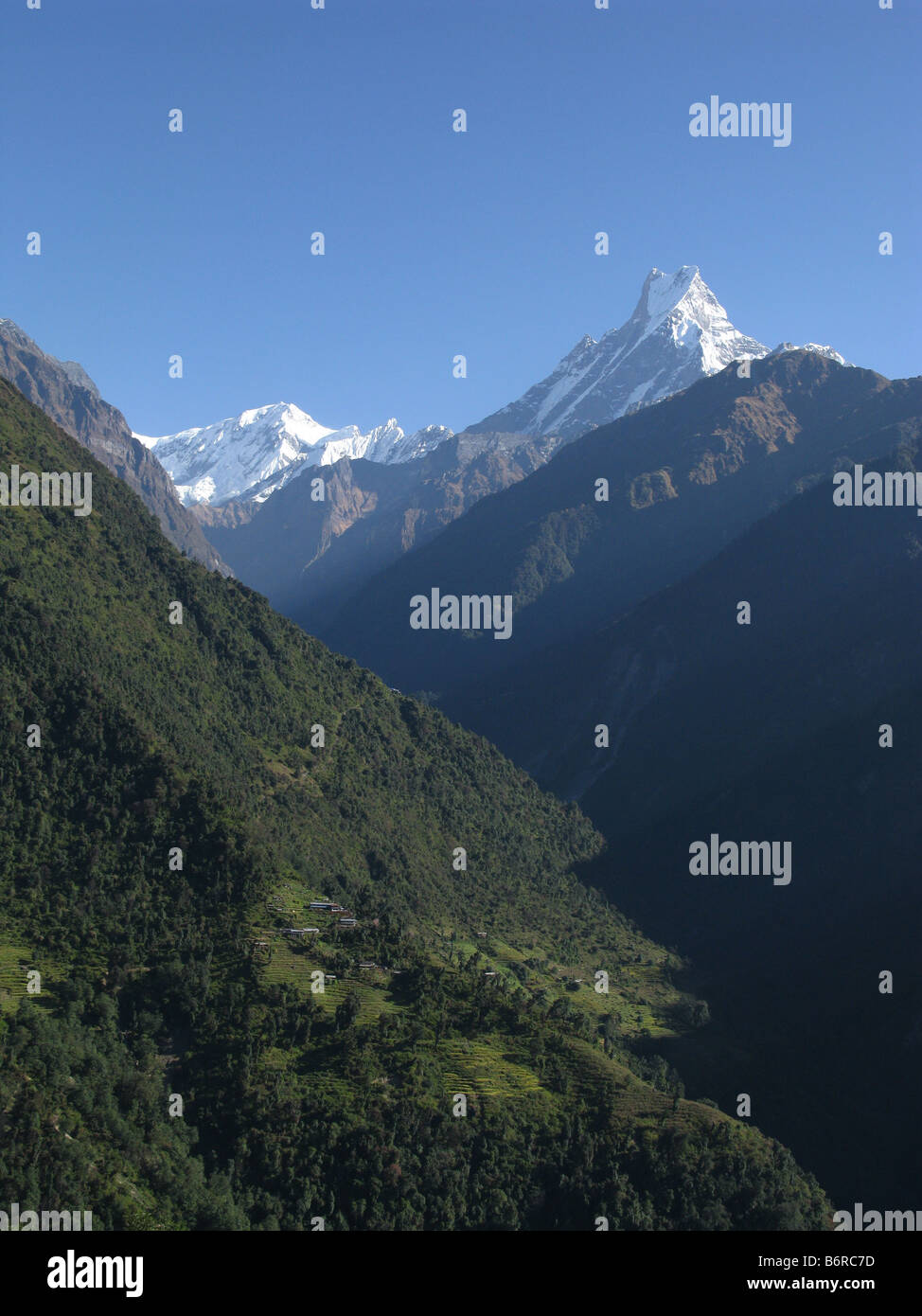 Machapuchare (Fishtail) mountain seen from Chhomrong, Annapurna foothills, Gandaki, Himalayas, Nepal, central Asia - Stock Image