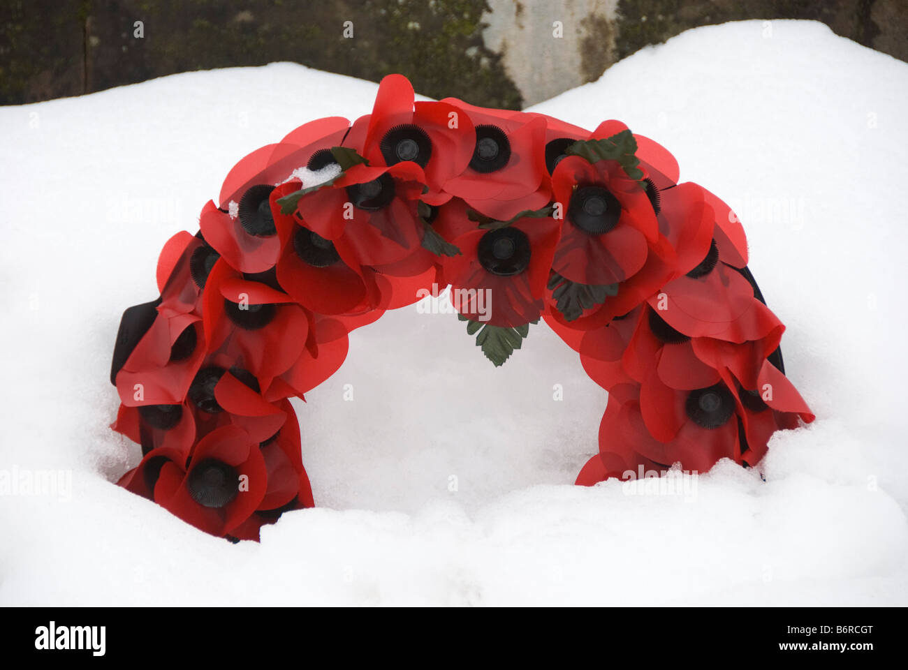 Wreath of poppies on a snow-covered war memorial, UK - Stock Image