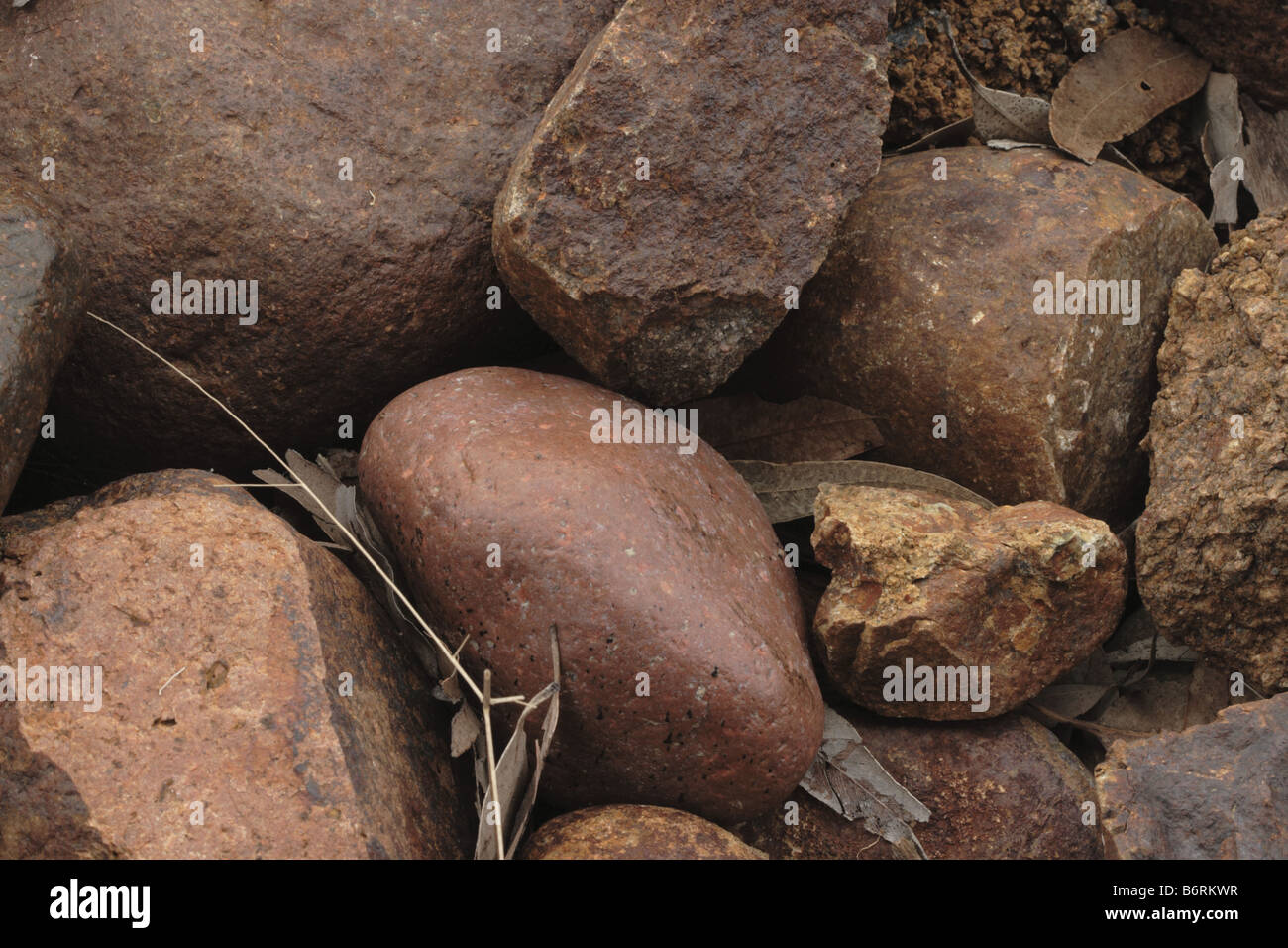 River stones with dead gum leaves - Stock Image