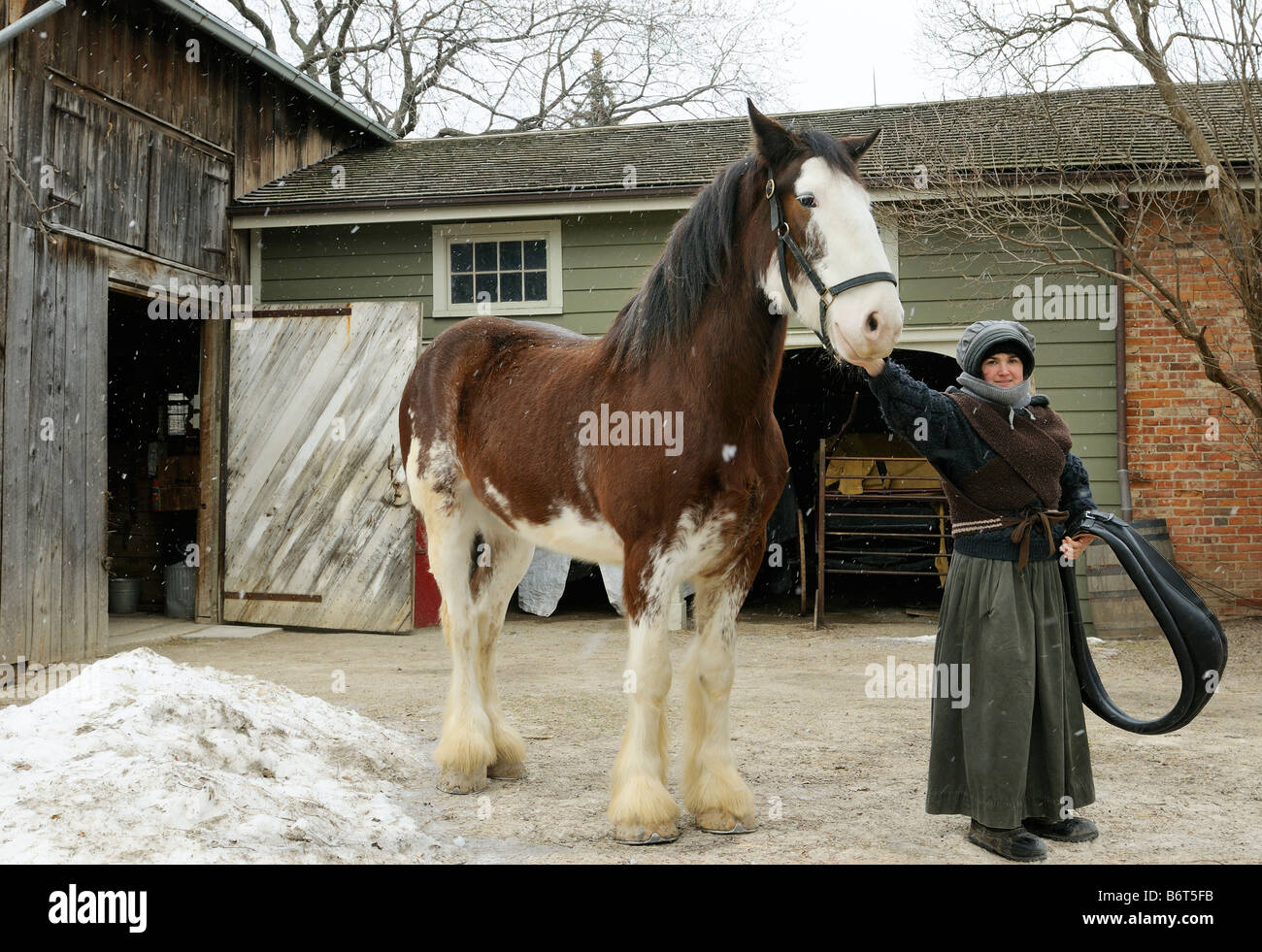 Draft horse and period reenactor at a circa 1860 House and Stable at Black Creek Pioneer Village Toronto - Stock Image