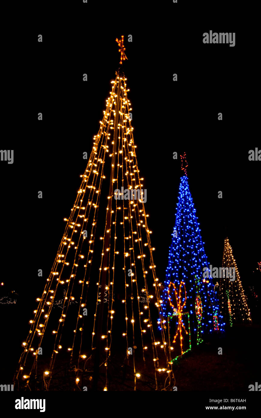 Three Christmas Trees Bright Colors Two White Lights One Blue Light