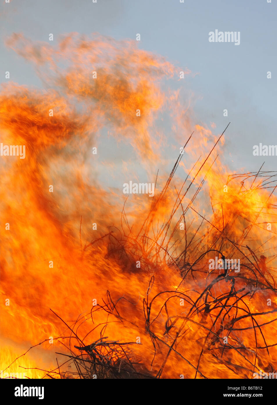 close-up of a large wildfire burning brush and debris - Stock Image