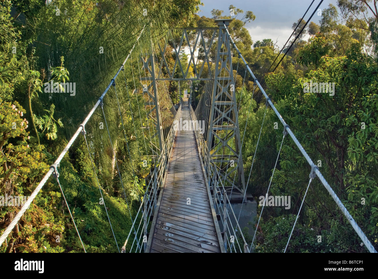 Spruce Bridge over Kate Sessions Canyon after rain San Diego California USA - Stock Image