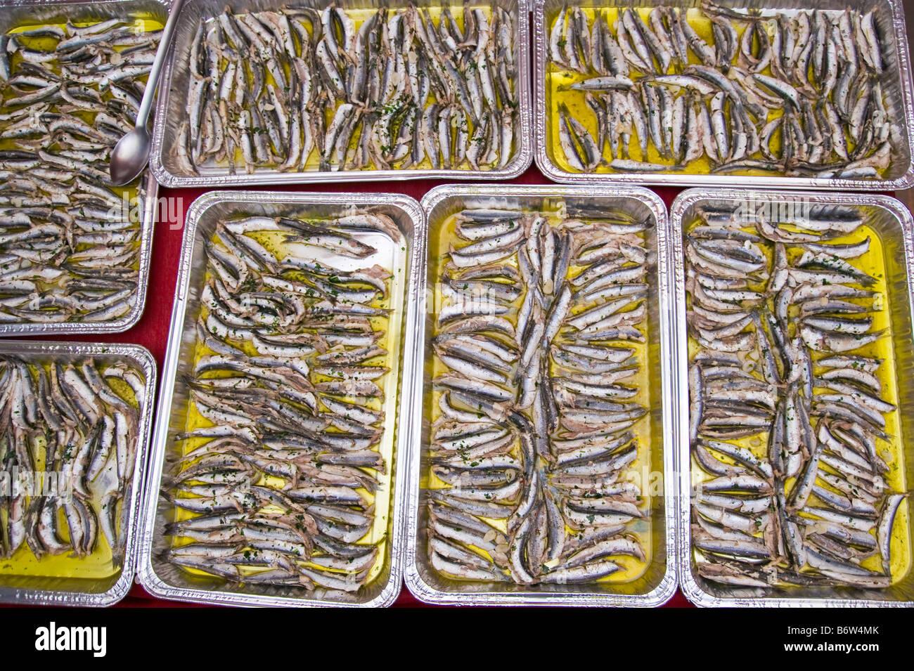 Sardines in olive oil - Stock Image