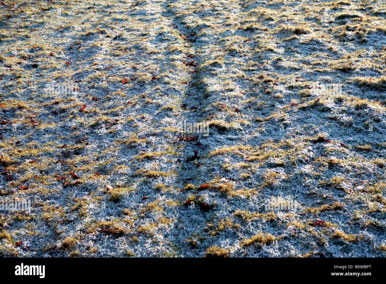 A path worn by livestock cuts across a frosty field in winter, somerset UK. - Stock Image