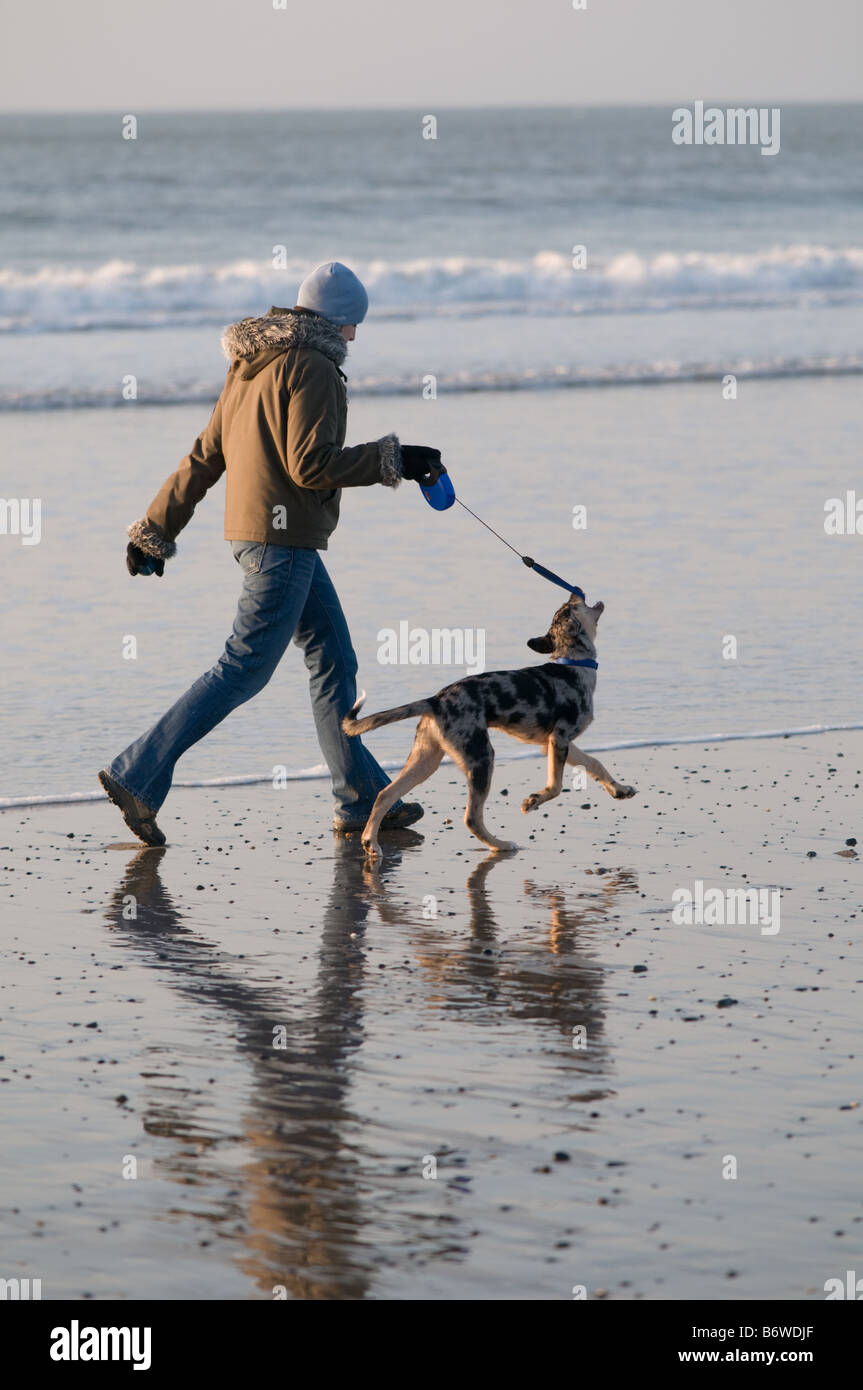 A young Woman walking her pet dog on the beach Borth west wales on New Year s day 2009 - Stock Image