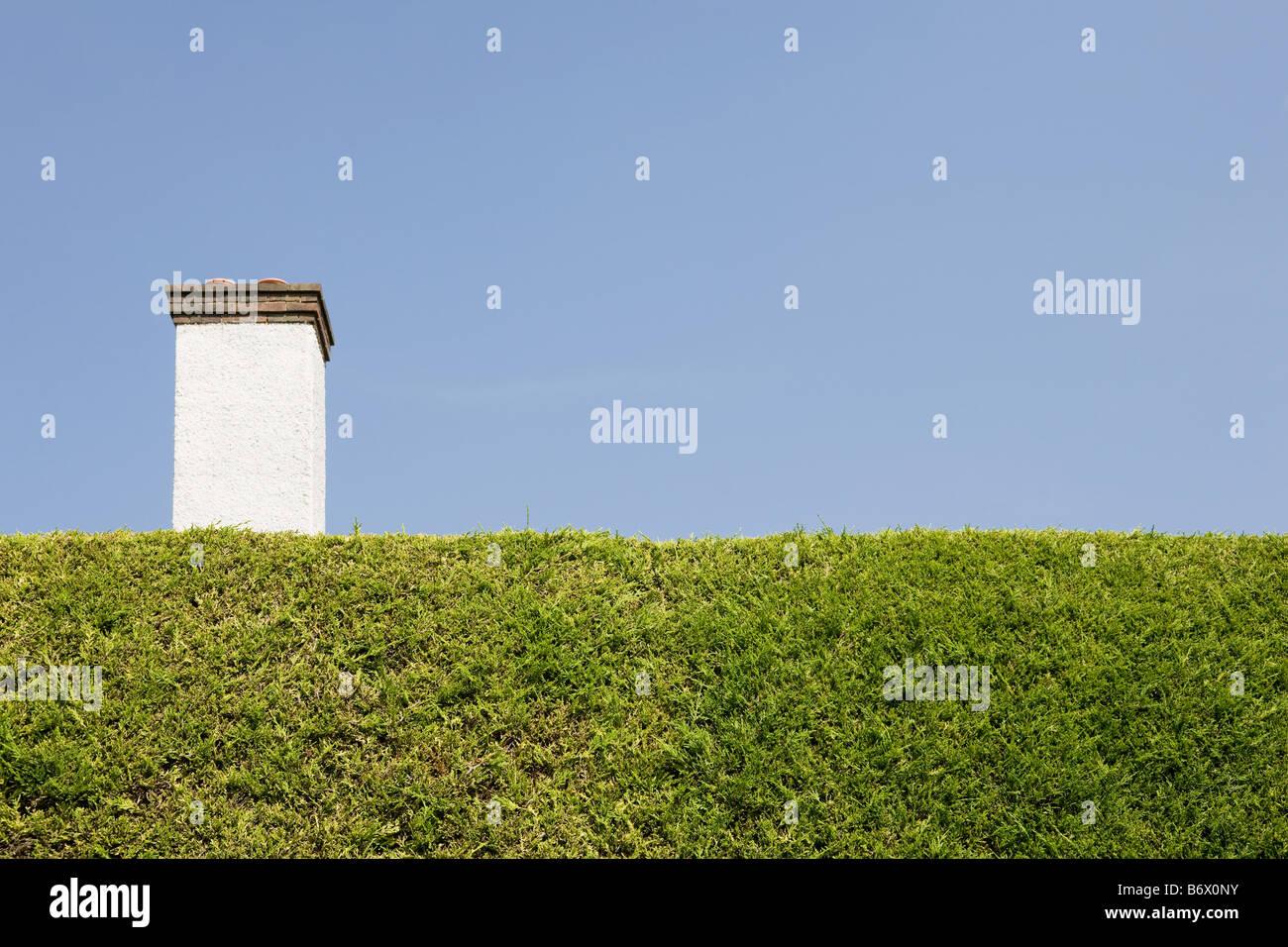 Chimney behind hedge - Stock Image