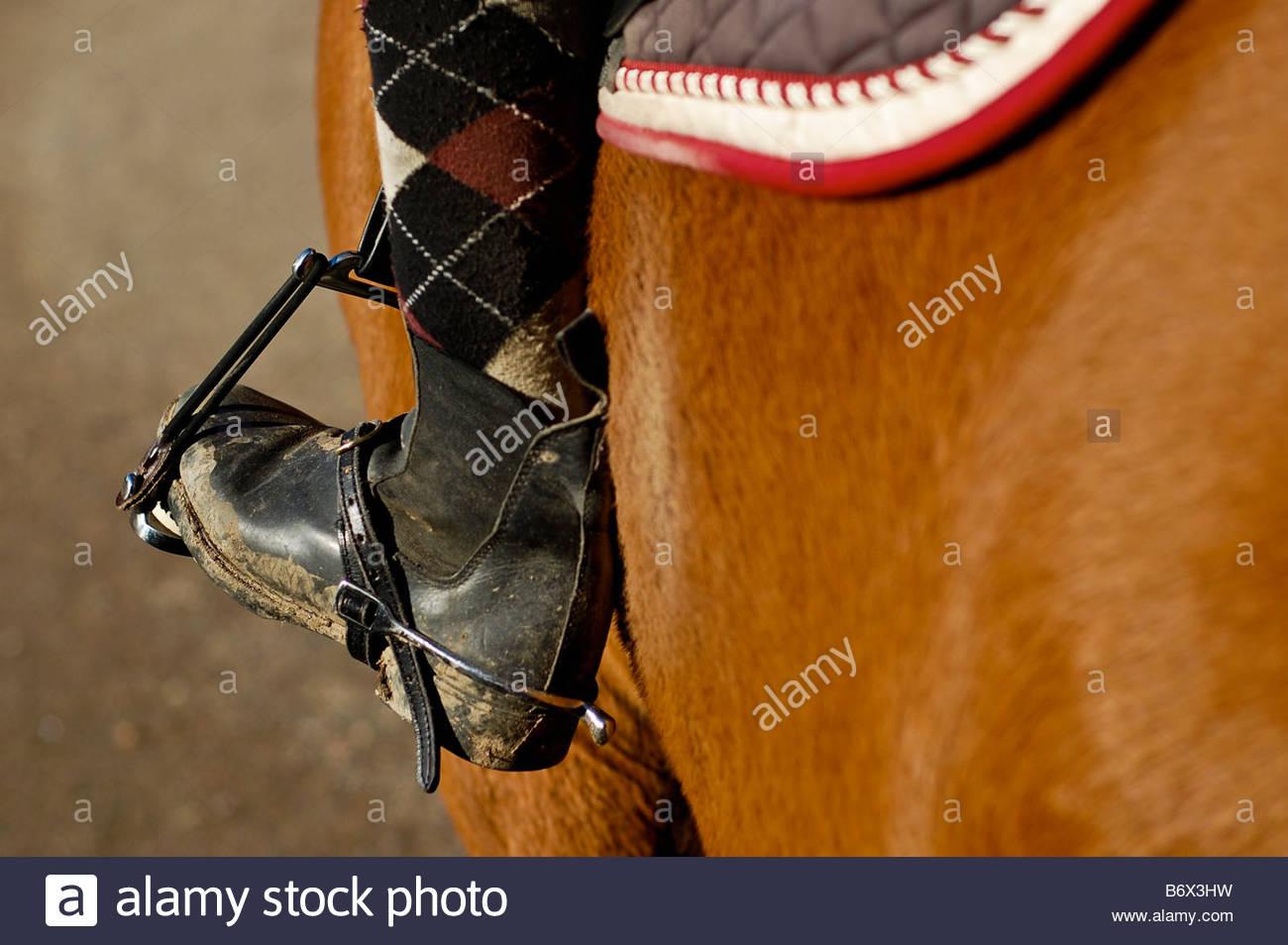 Stirrup and shoe - Stock Image
