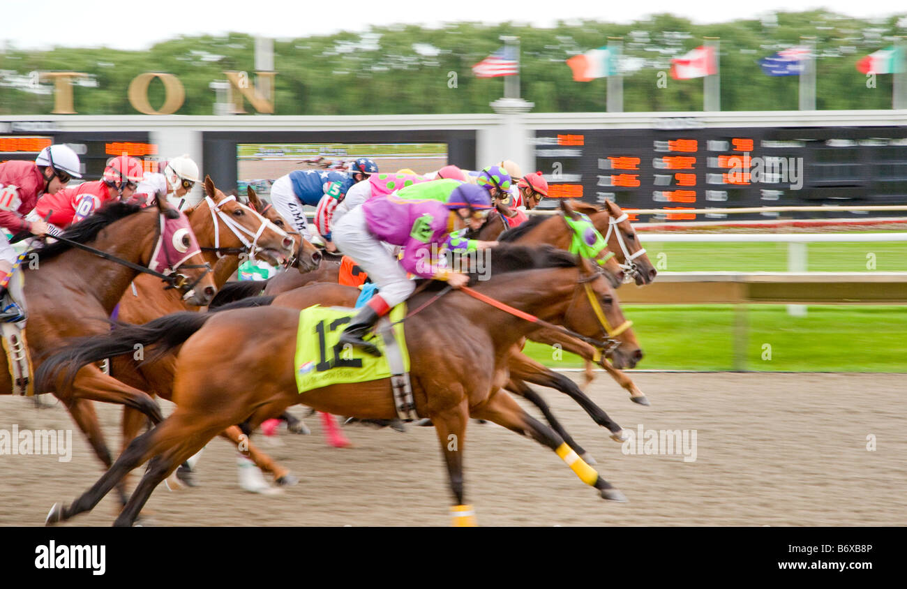 Thoroughbreds going for the lead - Stock Image