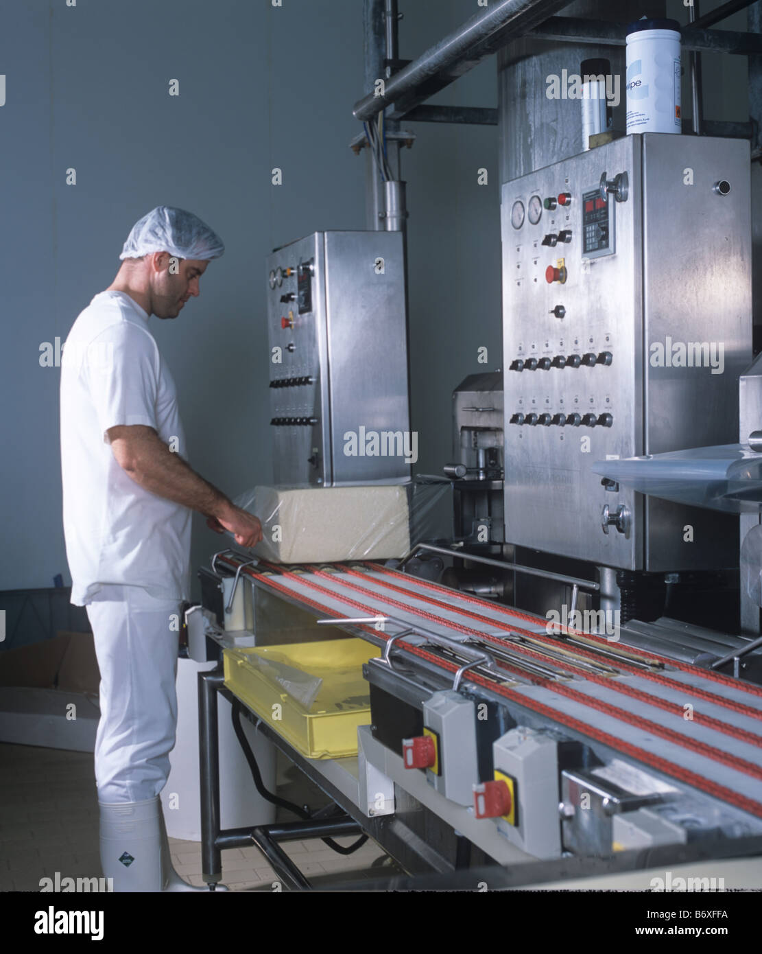 Cheese from towers where it is compressed is cut into blocks and put into polythene bags to mature - Stock Image