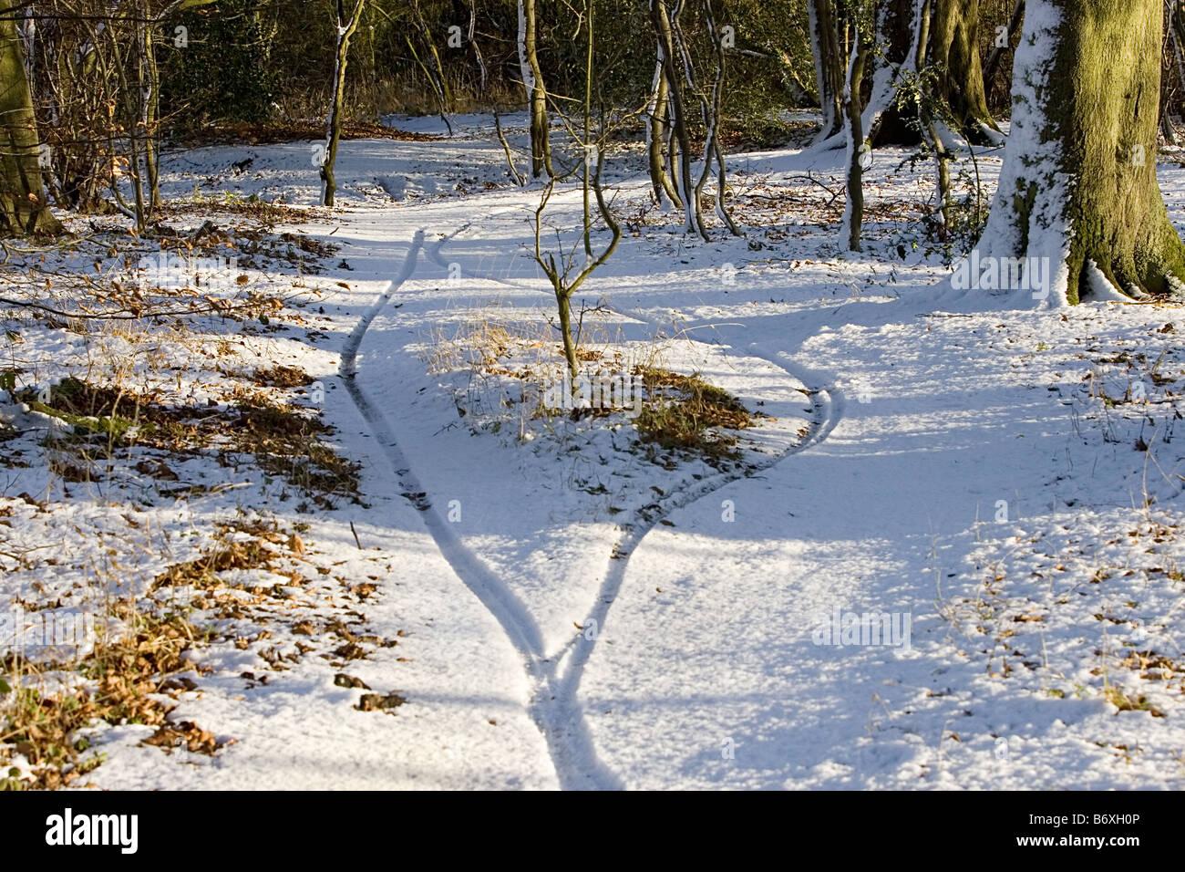 Bike tracks in snow 2 - Stock Image