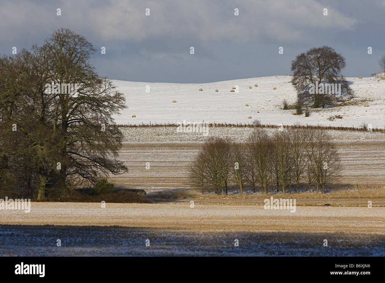 Chilterns in the snow 1 - Stock Image