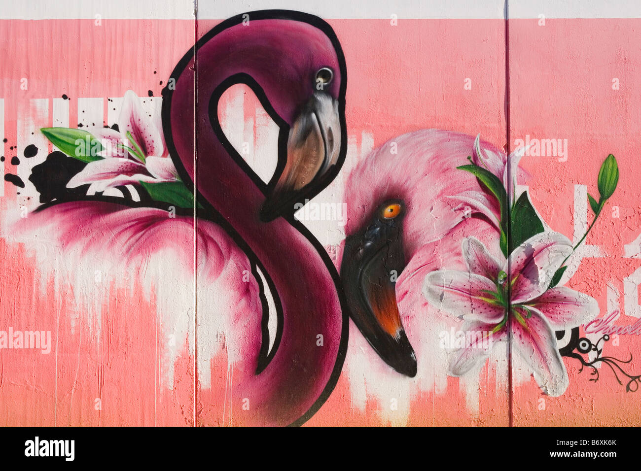 Graffiti on wall of two pink flamingoes - Stock Image