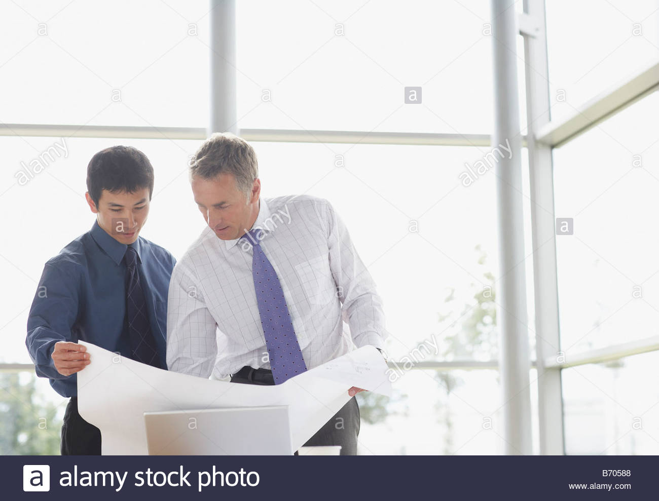 Businessmen looking at blueprints - Stock Image